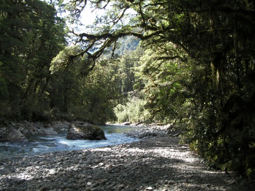 New Zealand Fly Fishing Expeditions - somewhere in Fiordland
