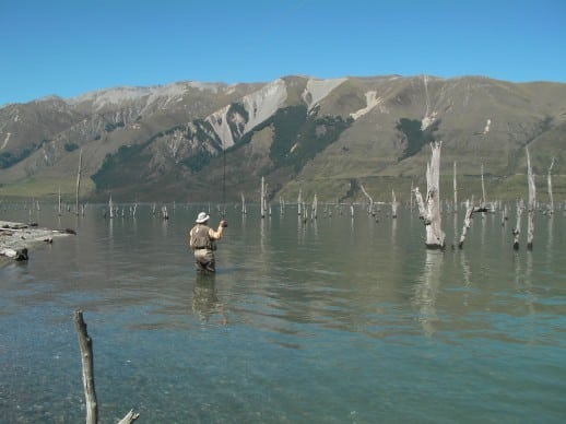 New Zealand Fly Fishing Expeditions - Does the bear s*#t in the woods?