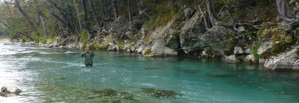 Spotting NZ Trout